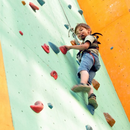 "Adventure Developments ""Climbing Walls"""